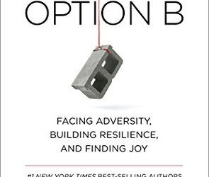 """Book Review – """"Option B"""""""